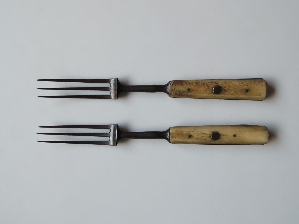Bone handle Fork